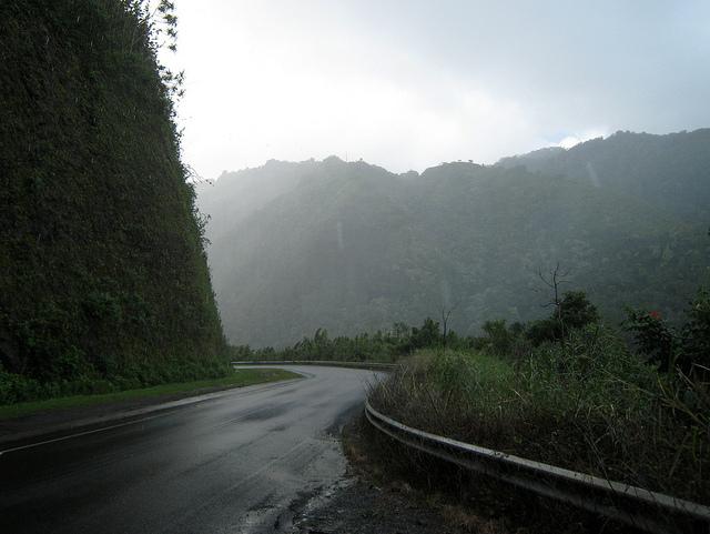 rainy-road