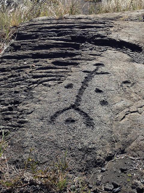 petroglyph-puu-loa-trail