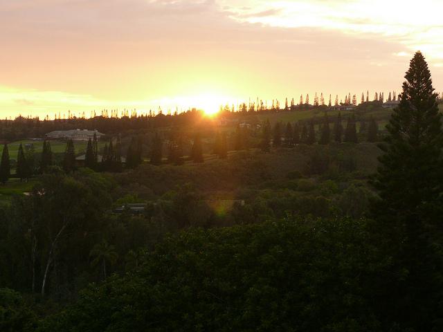 kapalua-maui-sunrise