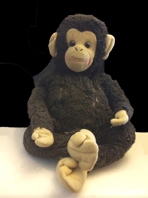 real-monkey