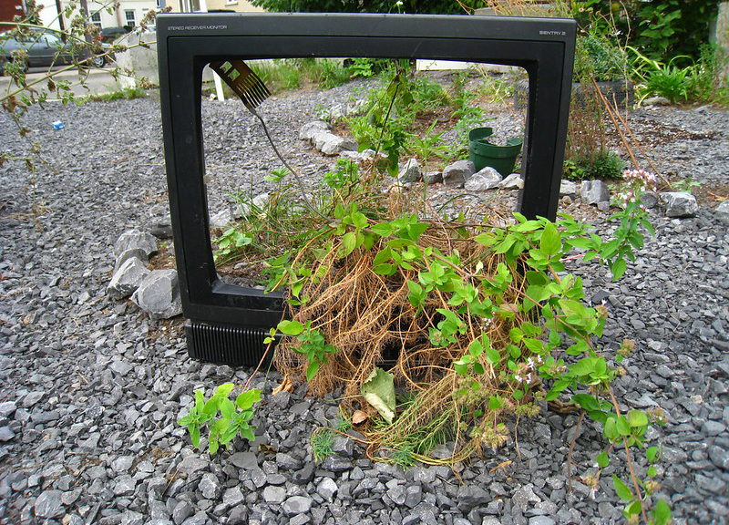guerilla-garden-and-tv