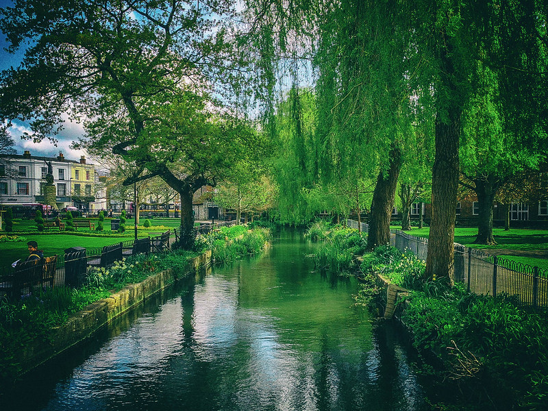 winchester-green