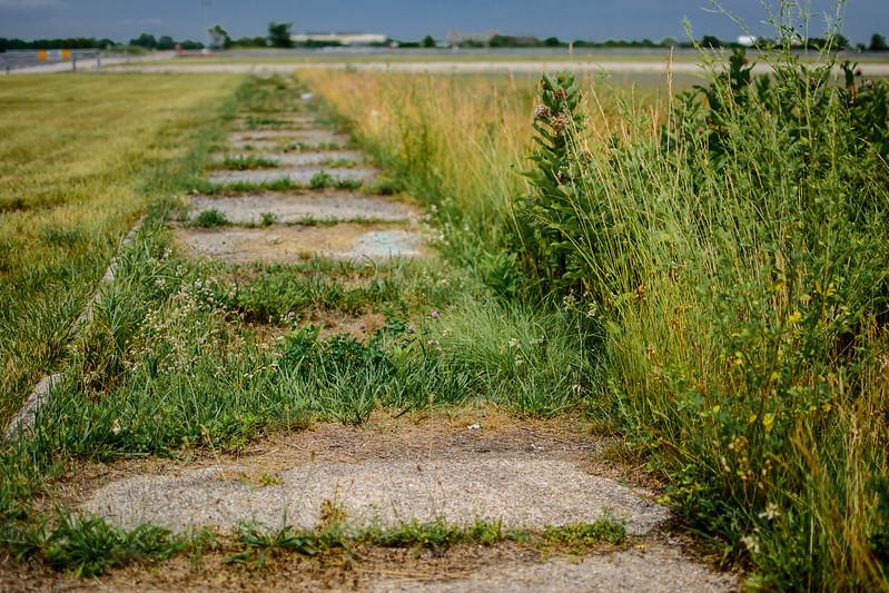 foresaken-road