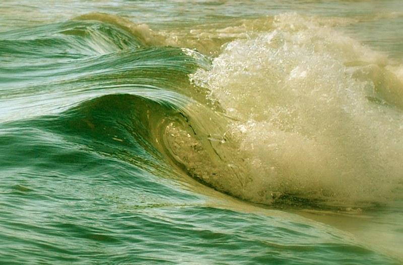 living-waves