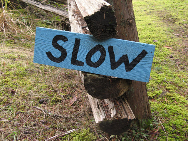 in-praise-of-slow
